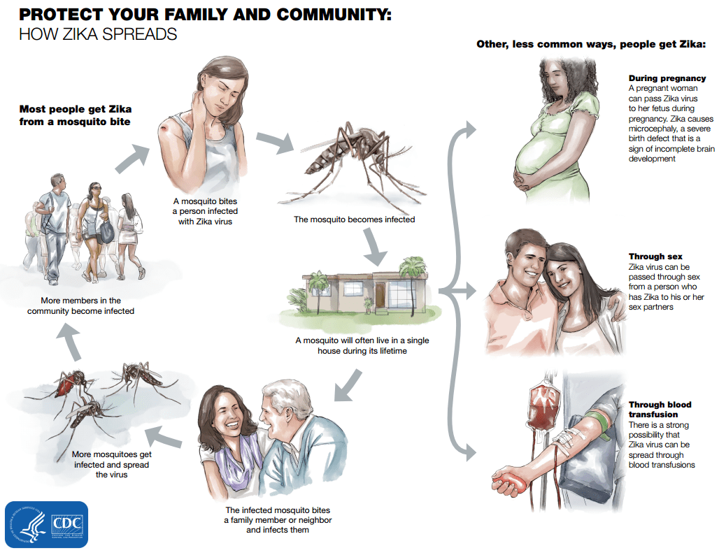 Protect Your Family from Zika