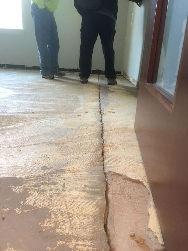 Foundation Cracks allows pests to enter your structure